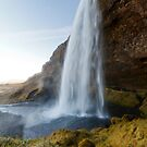 Seljalandsfoss by Nicholas Jermy