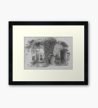 Ivy round the Window Framed Print