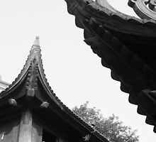 The Pagoda by levucuong