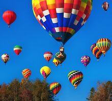 Lift Off , Balloon Festival, Statesville, NC by Denise Worden