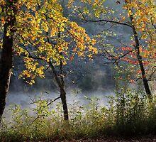 Riverbank Fall Color by Carolyn  Fletcher