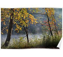 Riverbank Fall Color Poster