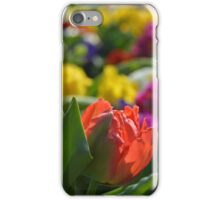 Spring Flowers Meadow iPhone Case/Skin