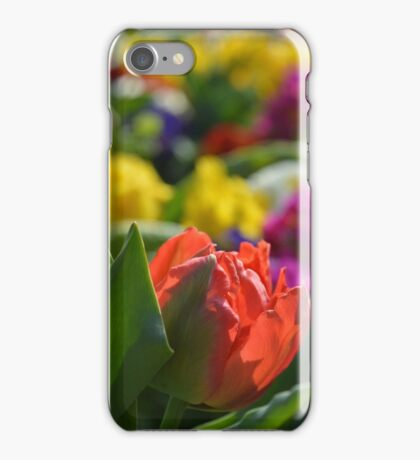 Spring Flowers Meadow iPhone Case/Skin