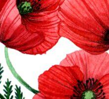 The poppies Sticker
