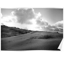 Dunes of Den Haag Poster