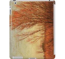 Orange winter iPad Case/Skin