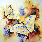 Butterfly by Bev  Wells