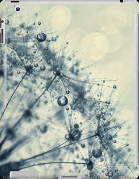droplets of indigo by Ingrid Beddoes