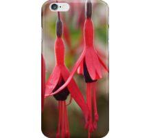 Flower Power Fuschia 08 iPhone Case iPhone Case/Skin
