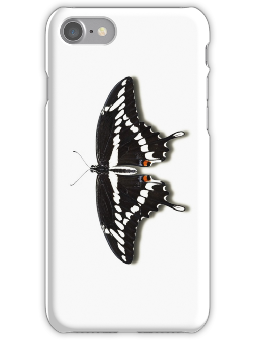 Smartphone Case - Butterfly - Giant Swallowtail by Mark Podger