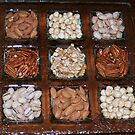 Edible nuts by Segalili