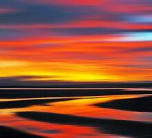 Apple Design iPad Cover Wetlands Twilight by David Alexander Elder