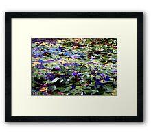 Many waterlilies Framed Print
