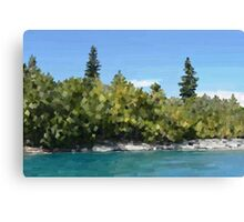 Trees by lake, oil Canvas Print