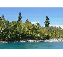 Trees by lake, oil Photographic Print