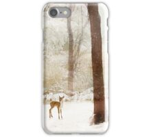 Winter Whimsy iPhone Case/Skin