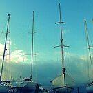 Sail Boats In Bangor Marina by Fara