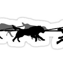 Husky - dog sled - Yukon Quest - Alaska  Sticker