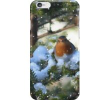Christmas is for sharing iPhone Case/Skin