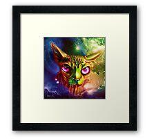 sphynx cat Framed Print