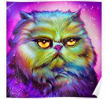 LouLou, persian cat Poster