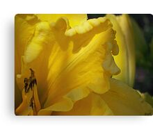 Yellow View Canvas Print