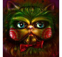 Jigsaw Kitty Photographic Print