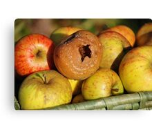 Bad apple in the basket Canvas Print