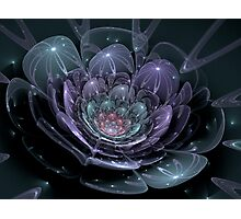 Glass Flower (available in ipad case) Photographic Print