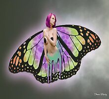 Painted Butterfly by Diana Shively