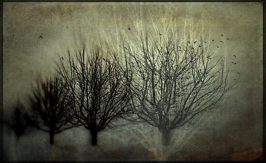 Moments in Time by Annie Lemay  Photography