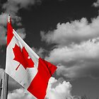 Canadian Flag by Tim Trott