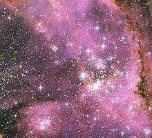 Pink Nebula by SOIL