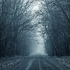 Gloomy Road to Nowhere by April Koehler