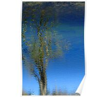 Mirrored Lake 2 Poster