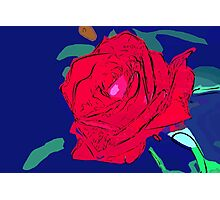 Red rose abstract 2 Photographic Print