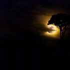 Full moon..... by DaveHrusecky
