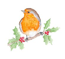 Holly Robin Photographic Print