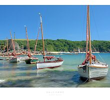 Salcombe, Devon by Andrew Roland