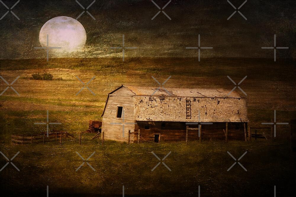 In the Wee Hours of the Morning by Vickie Emms