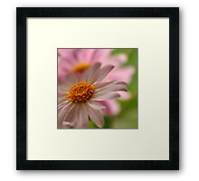 A Touch of Pink ~ Framed Print