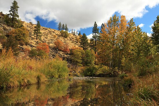 Susan River 10-25-12 by James Eddy