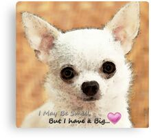Chihuahua Dog Art - Big Heart Canvas Print