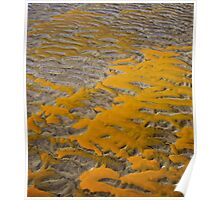 Yellow Patterns in the Sand Poster