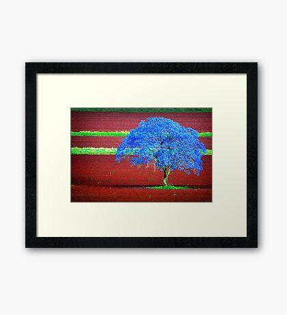Lonely & Blue.. Framed Print