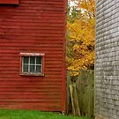 Red Barn by Lee roberts