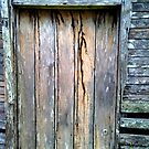 old Wooden Door by erison103