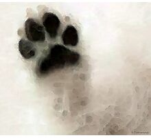 Dog Art - I Paw You Photographic Print