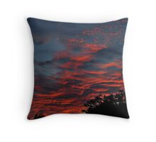 But His Delight Is In The Law Of The Lord Throw Pillow